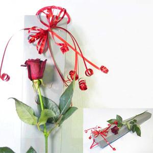 Flowers, Single Red Rose. Single Red Rose in speciality gift wrapping. Flexible wedding flower packa