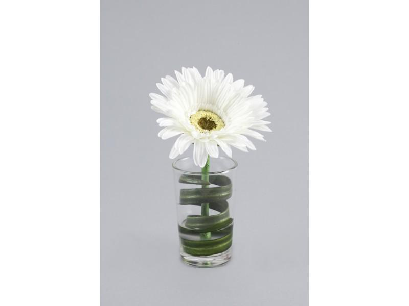Flowers, Single white Gerbera in glass with water illusion. Size: H 15cm W 9cm.