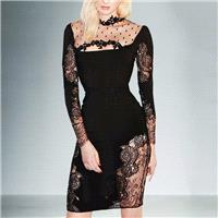 Vogue Sexy Seen Through Slimming Sheath It Girl Spring Lace Formal Wear Dress - Bonny YZOZO Boutique